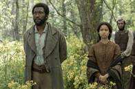 Free State of Jones Photo 8