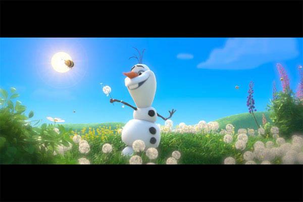 Frozen Photo 12 - Large