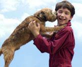 Good Boy! Photo 4 - Large