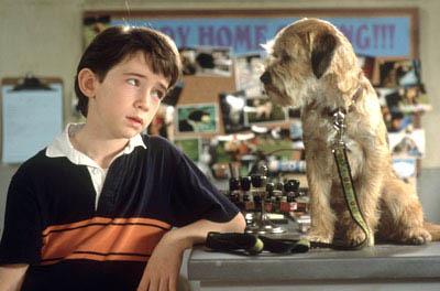 Good Boy! (2003) Photo 1 - Large