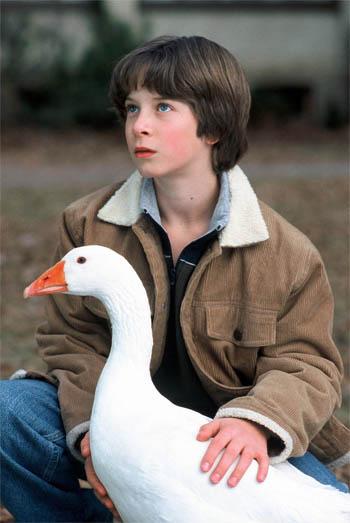 Goose! Photo 2 - Large