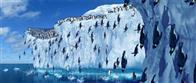 Happy Feet Photo 29