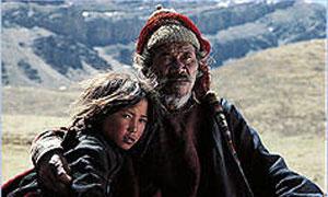 Himalaya Photo 4 - Large