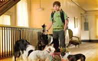 Hotel for Dogs Photo 3