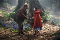 Into the Woods Photo 13