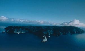 Island Of The Sharks Photo 2 - Large