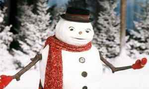 jack frost Photo 12 - Large