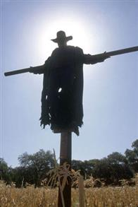 Jeepers Creepers 2 Photo 6