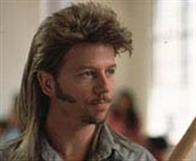 Joe Dirt Photo 16