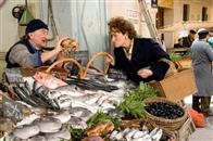 Julie & Julia Photo 12