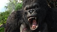 King Kong Photo 18
