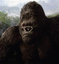 King Kong Photo 36