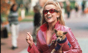 Legally Blonde Photo 2 - Large