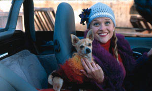 Legally Blonde Photo 4 - Large