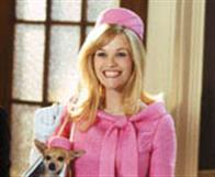 Legally Blonde 2: Red, White & Blonde Photo 6