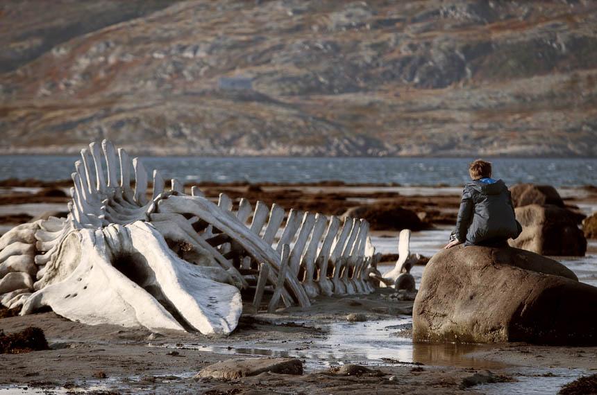 Leviathan Photo 3 - Large