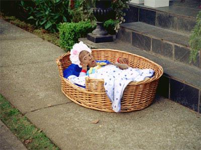 Little Man Photo 8 - Large