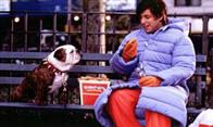 Little Nicky Photo 10