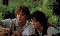 The Lord of the Rings: The Fellowship Of The Ring Photo 2