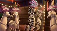 Madagascar 3: Europe's Most Wanted Photo 9
