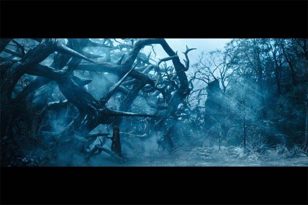 Maleficent Photo 23 - Large