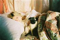 Marie Antoinette Photo 18
