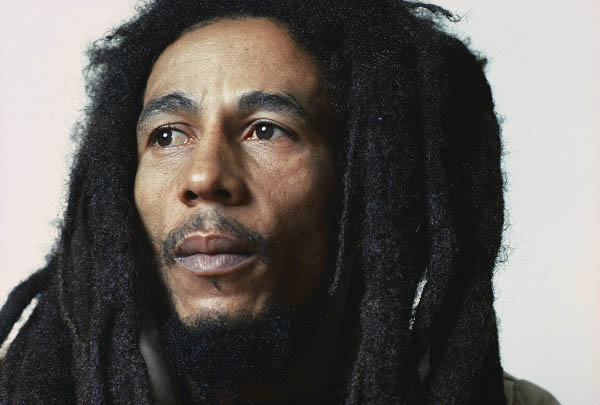 Marley Photo 4 - Large