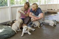 Marley & Me Photo 6