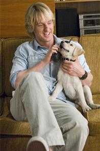 Marley & Me Photo 17