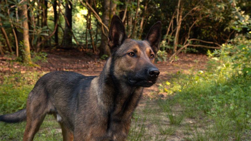 Max Photo 12 - Large