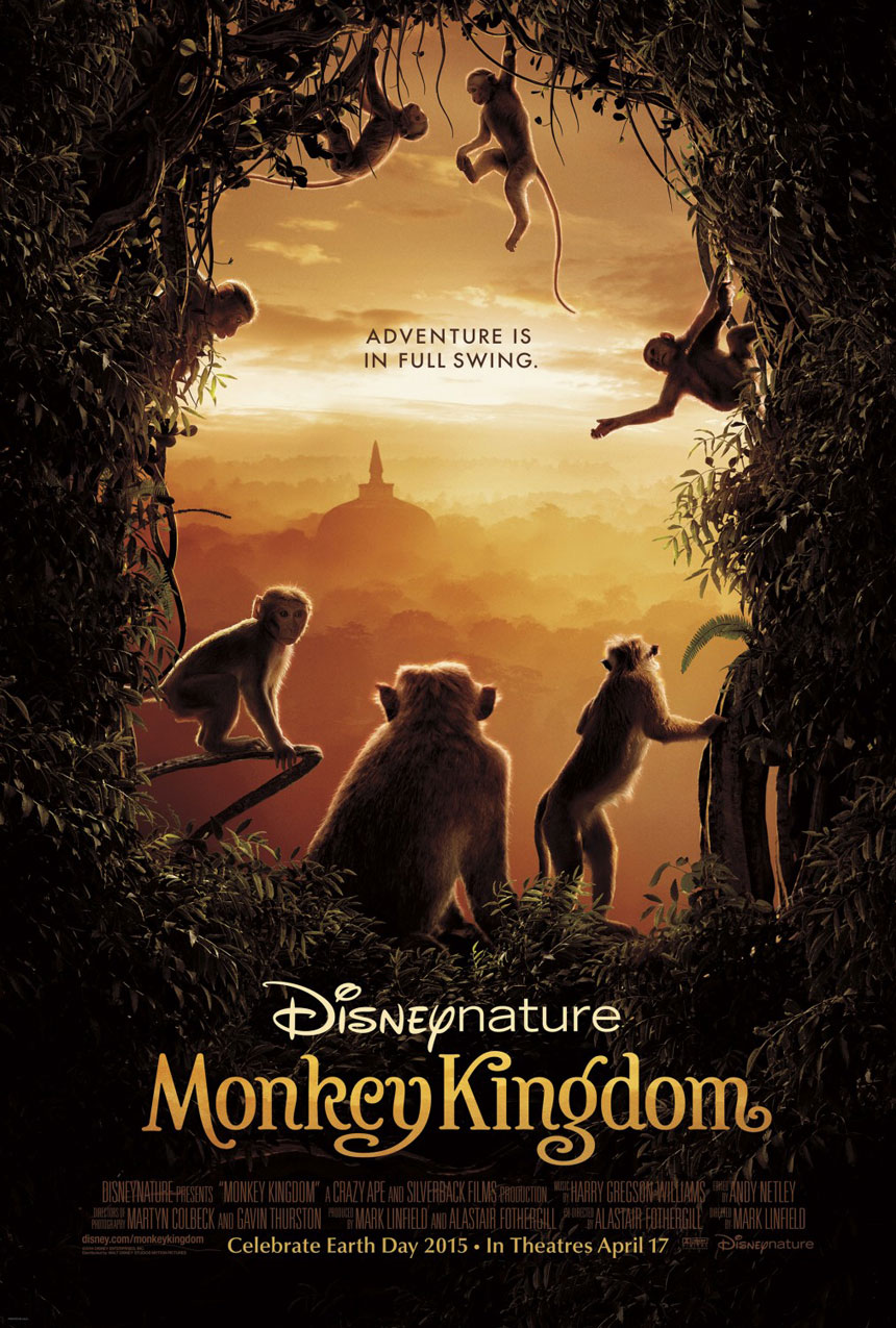 Monkey Kingdom Photo 6 - Large