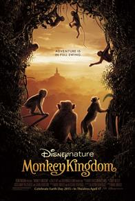 Monkey Kingdom Photo 6