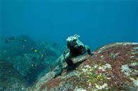 Oceans Photo 14