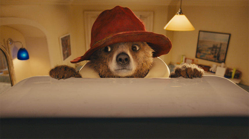 Paddington Photo 3 - Large