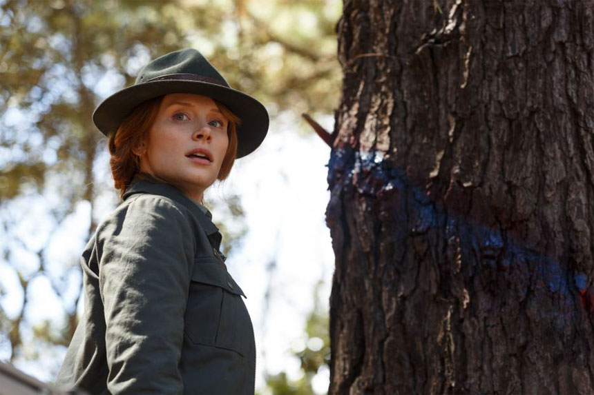 Pete's Dragon Photo 18 - Large