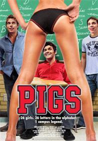 Pigs Photo 5