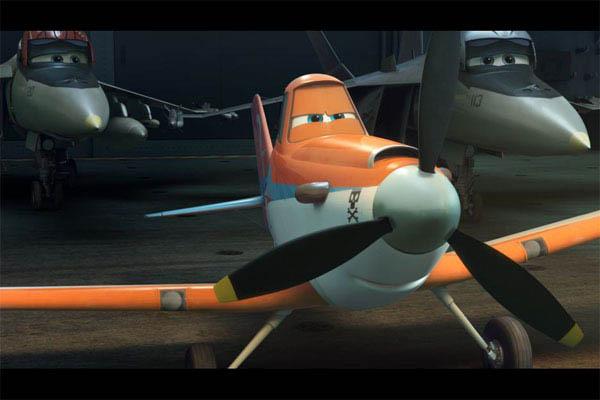 Planes Photo 10 - Large