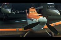 Planes Photo 13