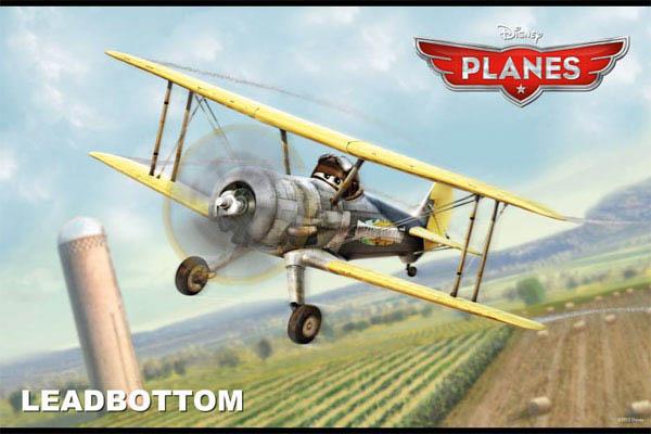 Planes Photo 34 - Large