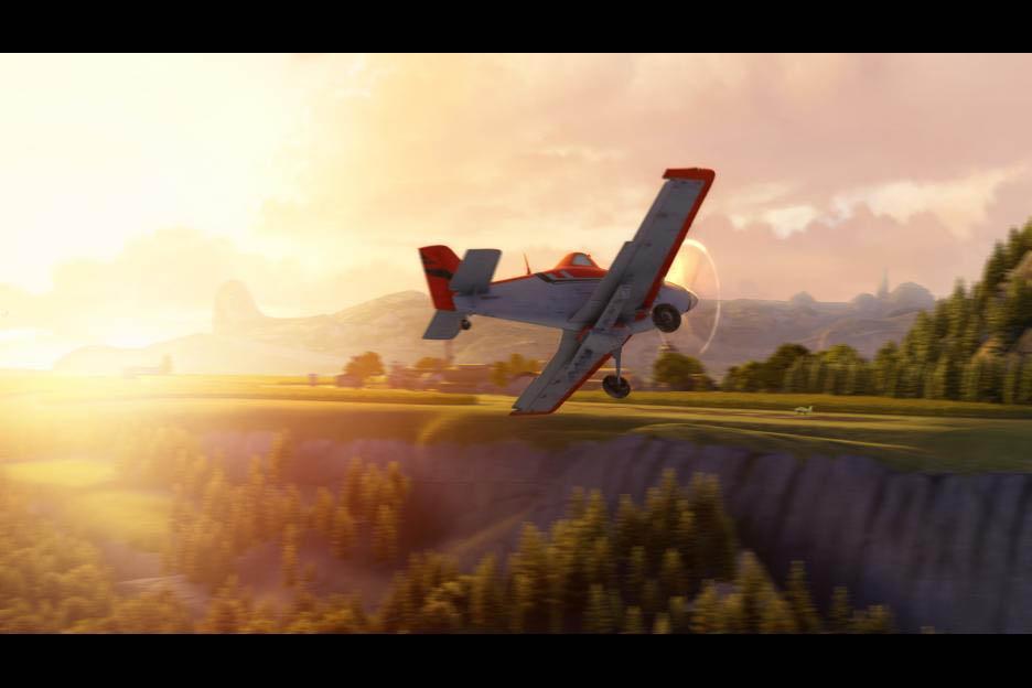 Planes Photo 36 - Large