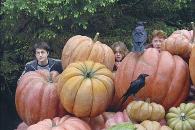 Harry Potter and the Prisoner of Azkaban Photo 16 - Large
