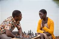 Queen of Katwe Photo 11
