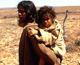 Rabbit-Proof Fence Photo 2 - Large