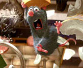 Ratatouille Photo 1 - Large