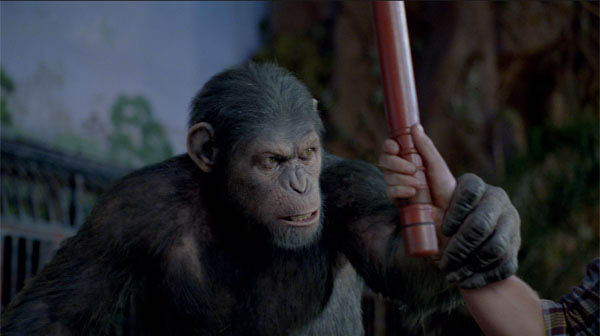 Rise of the Planet of the Apes Photo 6 - Large