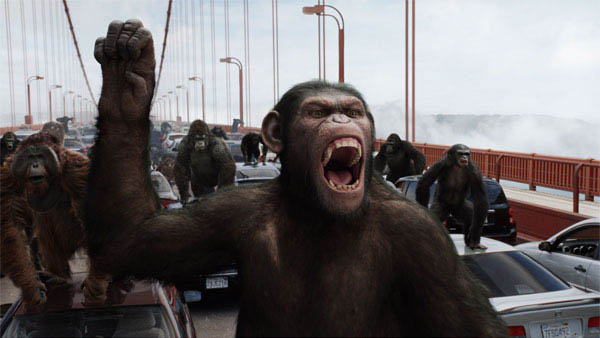Rise of the Planet of the Apes Photo 11 - Large