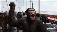 Rise of the Planet of the Apes Photo 11
