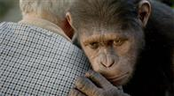Rise of the Planet of the Apes Photo 7