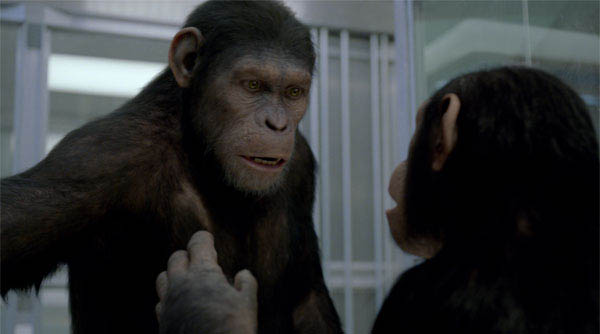 Rise of the Planet of the Apes Photo 2 - Large