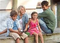 Safe Haven  Photo 8